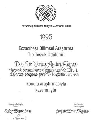 diploma 6